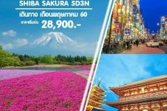 ญี่ปุ่น 2017_9761